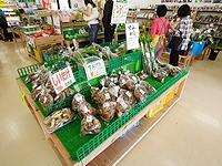 道の駅「童話の里くす」野菜コーナー