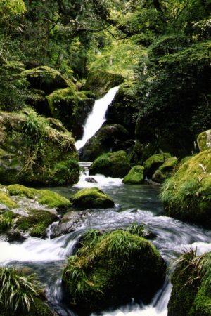 大分県玖珠郡玖珠町の観光情報/清水瀑園